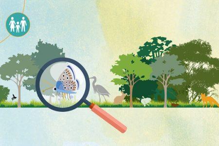 biodiversité-vidéo-dessinée-Néologis